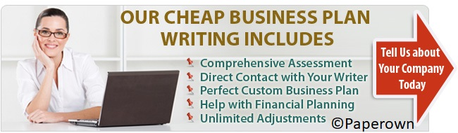 Business plan writer service